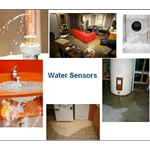 Water/Leak/Flood Sensors