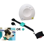Safety Turtle Child/Pet Immersion Pool/Water Alarm Kit
