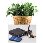 KJB Security SleuthGear Zone Shield Wireless Kit w/ PLANT CAM
