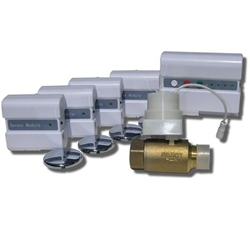 "Wireless FloodStop Kit for Whole House (with 1"" valve)"