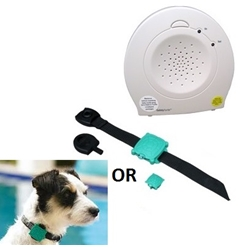 Safety Turtle Water Immersion Pool Alarm