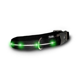 Visiglo Nylon Collar w/ LED Lights- Black