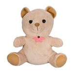 KJB Security C1250C Teddy Bear Camera Color Hardwired
