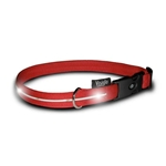 Visiglo Nylon Collar w/ LED lights- Red