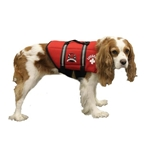 Paws Aboard Neoprene Doggy Life Jacket Red XL